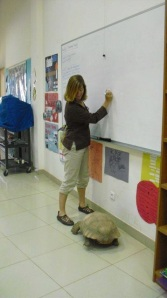 One of our school tortoises assists Robin in teaching the finer points of gothic fiction.